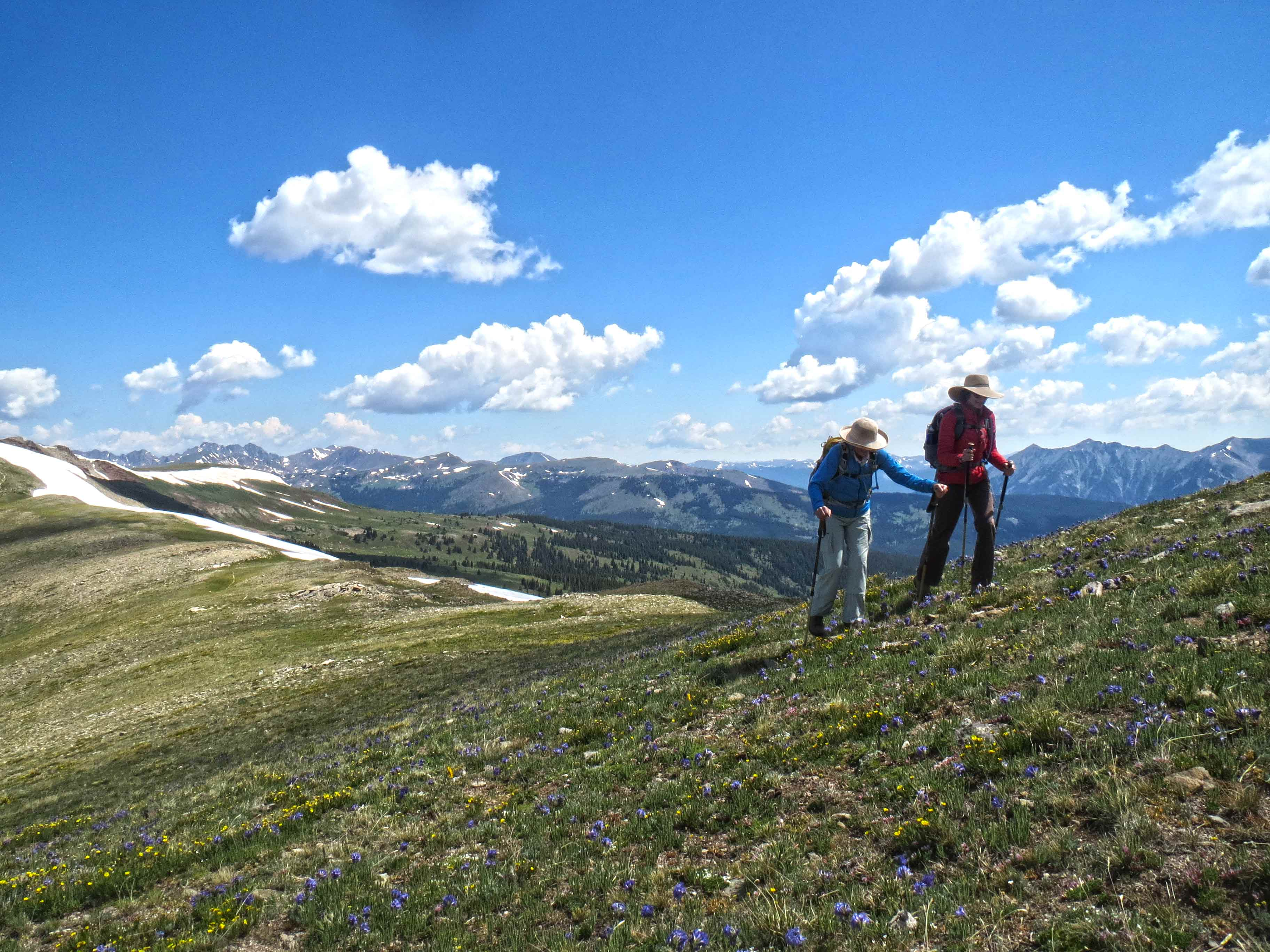 Walking Mountains Science Center Adult Hiking Vail Colorado 2 WEB